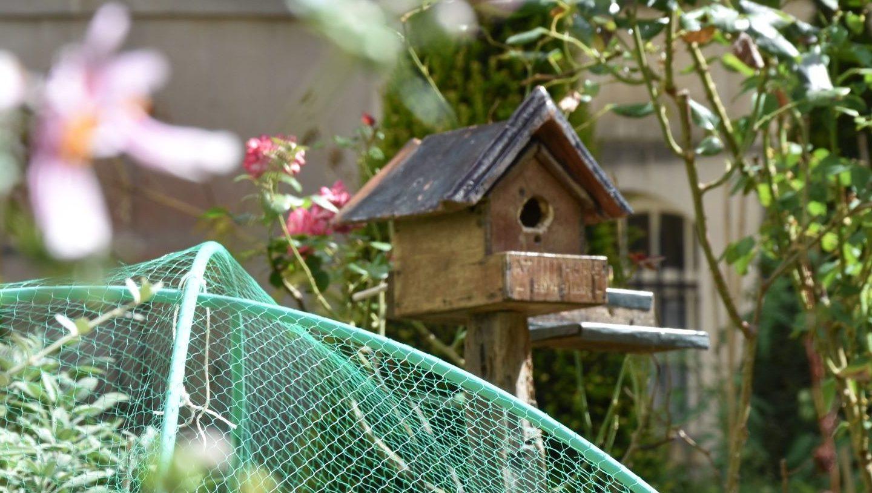 Tre Hôtel particulier per un giardino